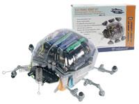 Kit - Ladybug Robô - KSR6
