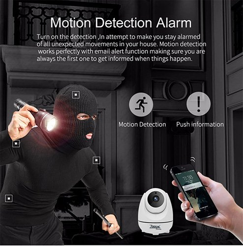 CAMLINE PRO HD IP Camera with PAN-TILT function - micro SD card - motion detection