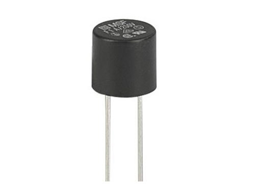 Radial leaded PCB mount sub-miniature fuse 5.08 mm fast 1 A - 250 V