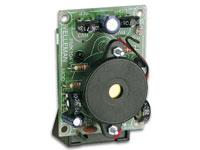MINIKIT GRILLO ELECTRONICO - MK104
